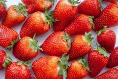 Fresas rojas de la granja foto de archivo libre de regalías