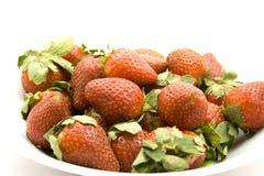 Fresas rojas frescas Fotos de archivo