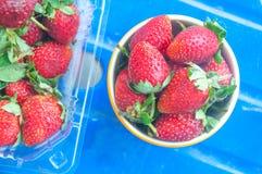 Fresas rojas maduras Foto de archivo
