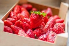Fresas rojas maduras frescas y dulces Fotografía de archivo
