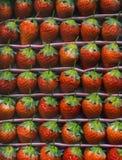 Fresas rojas perfectas en la tienda fina Foto de archivo