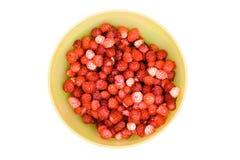Fresas salvajes en el tazón de fuente amarillo Foto de archivo libre de regalías