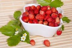 Fresas salvajes en un pequeño cuenco Fotos de archivo