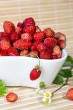 Fresas salvajes en un pequeño cuenco Foto de archivo