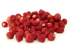 Fresas salvajes frescas Imágenes de archivo libres de regalías
