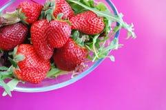 Fresas y arugula Imagen de archivo libre de regalías