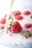 Fresas y leche Fotos de archivo libres de regalías