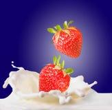 Fresas y leche Foto de archivo libre de regalías