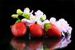 Fresas y mimosas Foto de archivo libre de regalías