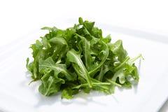 fresch sałatka półkowa rakietowa Fotografia Stock