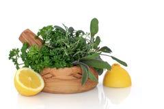 Freschezza del limone e dell'erba Immagine Stock Libera da Diritti