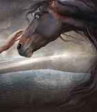 Fresco. Theme eternal as the world, the person and a horse Royalty Free Stock Photo