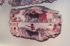 fresco Foto de Stock Royalty Free