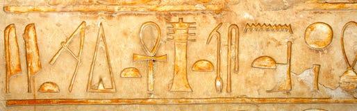 fresco Royaltyfri Fotografi