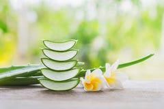 fresco affettato di aloe vera con il fiore di plumelia Immagini Stock Libere da Diritti