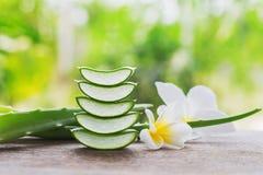 fresco affettato di aloe vera con il fiore di plumelia Fotografia Stock Libera da Diritti