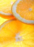 Fresco arancione Immagini Stock