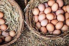 Fresco chiken los huevos en cestas de la paja Foto de archivo libre de regalías