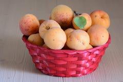 Fresco de frutos amarelos da estação fotografia de stock royalty free
