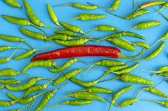 Fresco dei peperoncini rossi rossi e dei peperoncini rossi verdi Fotografia Stock