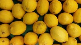 Fresco organico del limone di agricoltura sana della frutta Immagine Stock Libera da Diritti