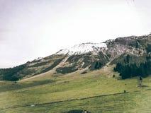 Fresco sul Mountain View della neve fotografia stock libera da diritti
