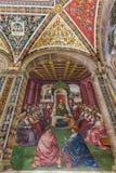 Frescoe Piccolomini arkiv Siena royaltyfria foton