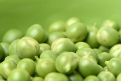 Frescoes green green peas and freshly reaped Royalty Free Stock Photos