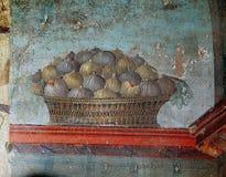 Frescoes i Pompeii ruines, Naples, Italien fotografering för bildbyråer