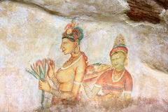 Frescoes Sigiriya (lew skała) Obraz Royalty Free