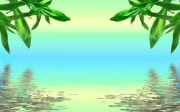 Frescor Imagens de Stock