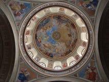 Frescos Foto de archivo libre de regalías