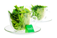 Frescura del té verde foto de archivo libre de regalías