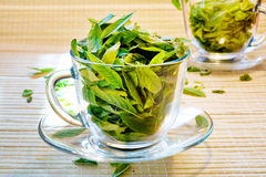 Frescura del té verde fotografía de archivo libre de regalías