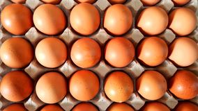 Fresh brown eggs. Background of fresh brown eggs on paper tray for sale at a market Stock Photos