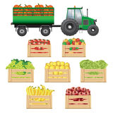 Fresh agricultural products transportation Royalty Free Stock Images