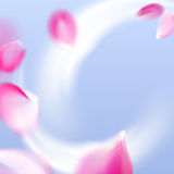 Fresh air flow with flying vector pink petals. In the blue sky background Stock Photography