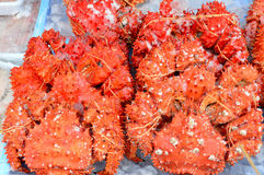 Fresh alaska king crab Royalty Free Stock Photography