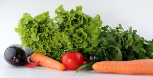 Fresh all vegetable white background. Vegetables Food Concept and Decoration Royalty Free Stock Image