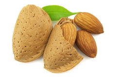 Fresh almond. Fresh and tasty almond with leaves royalty free stock photo
