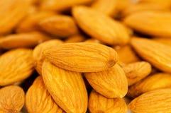 Fresh almonds Royalty Free Stock Image