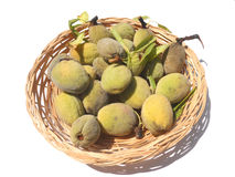 Fresh almonds Royalty Free Stock Images