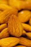 Fresh almonds arranged Royalty Free Stock Photo