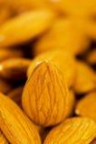 Fresh almonds arranged on the white Stock Image