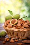 Fresh almonds in the basket Stock Image
