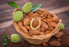 Fresh almonds in the basket Stock Photo