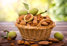 Fresh almonds in the basket Royalty Free Stock Image