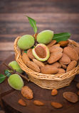 Fresh almonds in the basket Royalty Free Stock Images