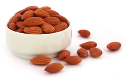 Fresh almonds Stock Images