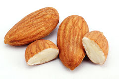 Fresh almonds on white Stock Images